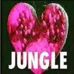 JUNGLE/ジャングル 【都市伝説・怖い話】