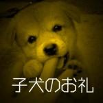 子犬のお礼