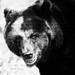 テントの前でヒグマの咀嚼音と人のうめき声が聴こえる…