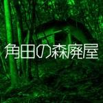 角田の森廃屋