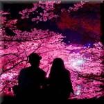 櫻の樹の下で