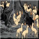 オサキギツネと犬神